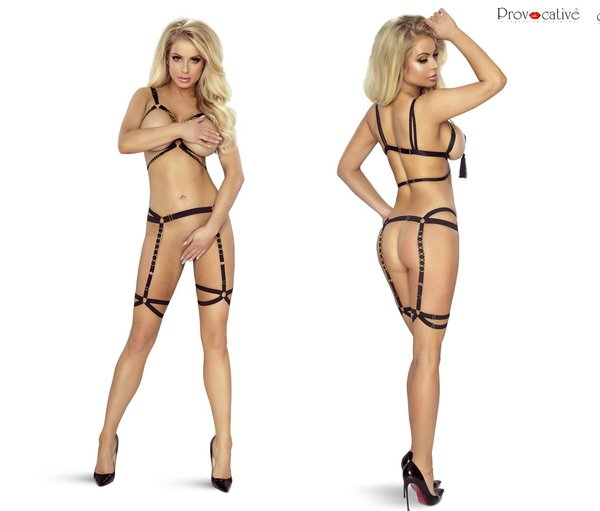 PROVOCATIVE SUSPENDER BELT HARNESS
